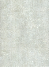 116504