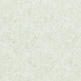 17153BN